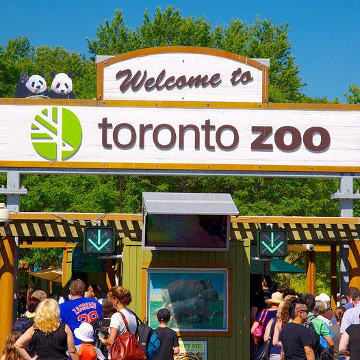 BOXED_Toronto-Zoo-49162