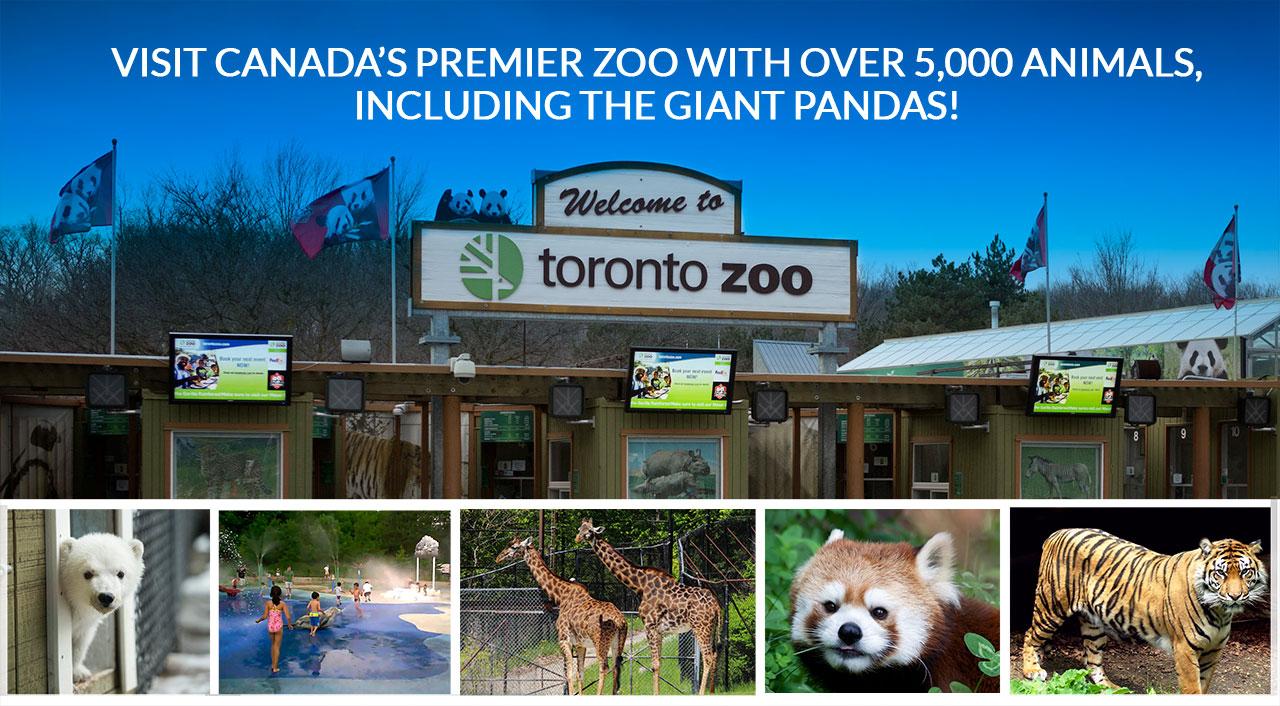Vườn thú Toronto là vườn thú lớn nhất ở Canada; nơi đây thu hút khoảng 1,3 triệu du khách mỗi năm